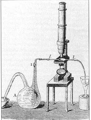 Louis Pasteur: Opstelling labo