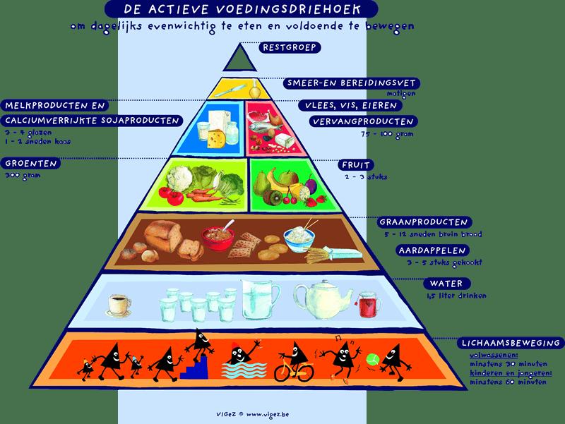 De actieve voedingsdriehoek