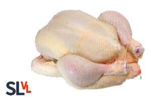 Verse gehele kip